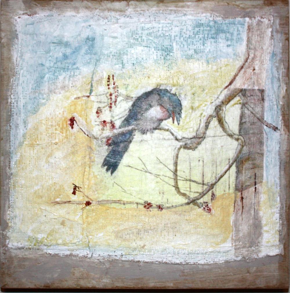 blue bird, kathievezzani