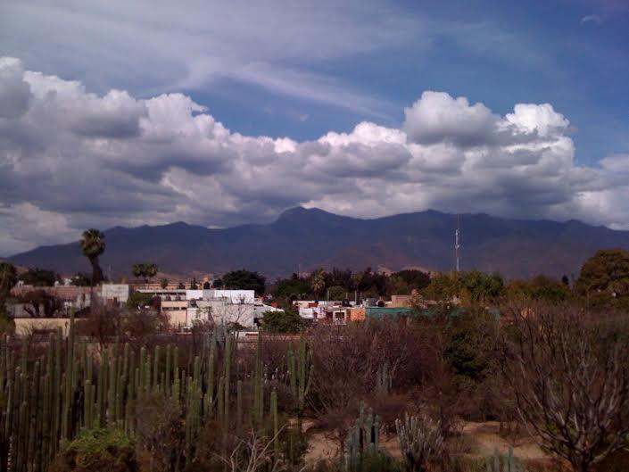 www.kathievezzani.com; Paint Oaxaca
